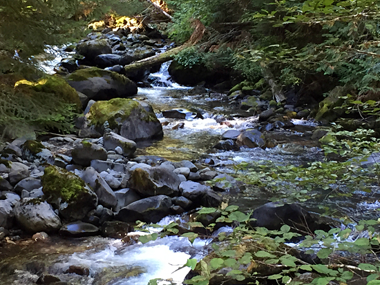 Grand Creek is one of the three 'rivers' for which the trail is named - the others are the Gray Wolf River and Cameron Creek