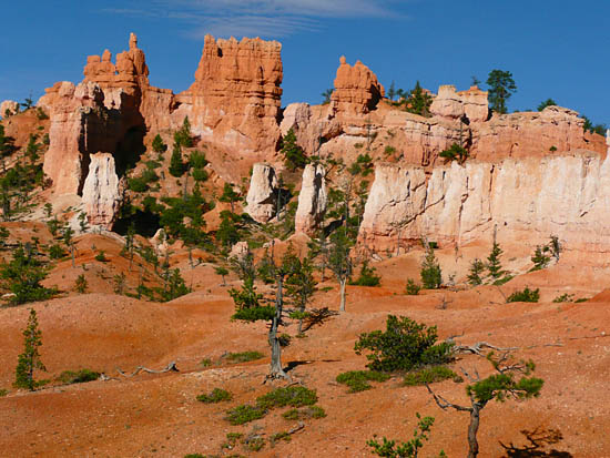Hoodoos erode into colorful sandstone mounds on the Fairyland Loop