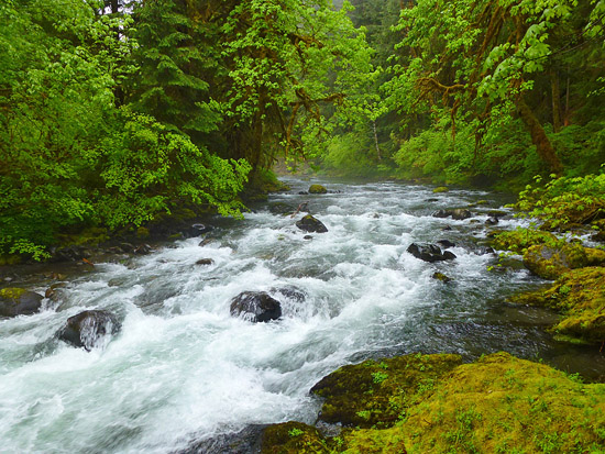 The ford at North Fork Sol Duc River