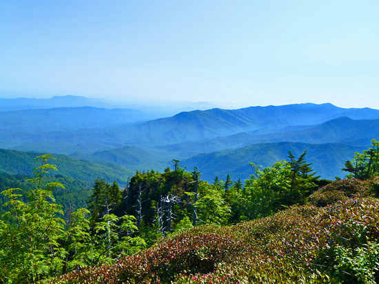 Northern views from the trail between Mount Le Conte summit and Myrtle Point