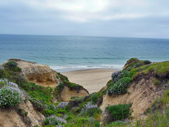 Eroding bluffs over Santa Maria Beach