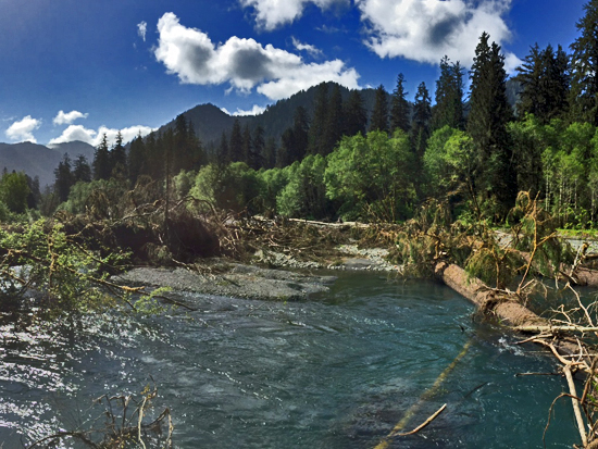 The South Fork in late Spring
